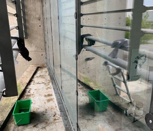 nettoyage vitre college proche de toulouse