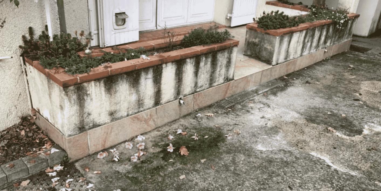 avant nettoyage facade toulouse